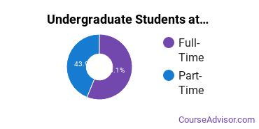 Full-Time vs. Part-Time Undergraduate Students at  Academy of Art University