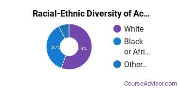 Racial-Ethnic Diversity of Academy of Hair Design - Jasper Undergraduate Students