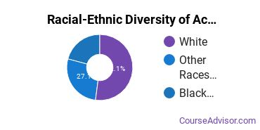 Racial-Ethnic Diversity of Accounting Majors at American InterContinental University - Online
