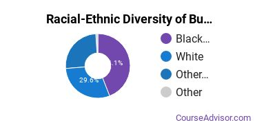 Racial-Ethnic Diversity of Business Administration & Management Majors at American InterContinental University - Online