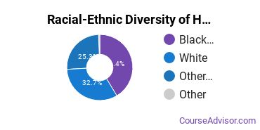 Racial-Ethnic Diversity of Homeland Security, Law Enforcement & Firefighting Majors at American InterContinental University - Online