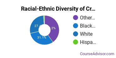Racial-Ethnic Diversity of Criminal Justice & Corrections Majors at American InterContinental University - Online