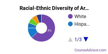 Racial-Ethnic Diversity of Arts & Media Management Majors at American University