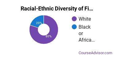Racial-Ethnic Diversity of Fine & Studio Arts Majors at Arkansas State University - Main Campus