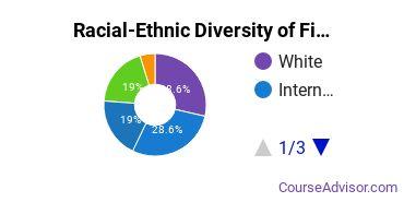 Racial-Ethnic Diversity of Fine & Studio Arts Majors at Art Center College of Design
