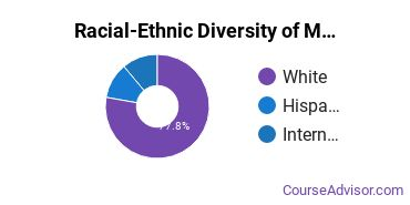 Racial-Ethnic Diversity of Multi / Interdisciplinary Studies Majors at Bentley University