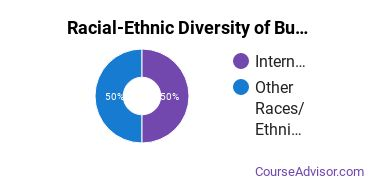 Racial-Ethnic Diversity of Business Support & Assistant Services Majors at Bergen Community College