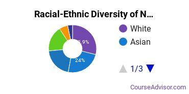 Racial-Ethnic Diversity of Nursing Majors at Bergen Community College