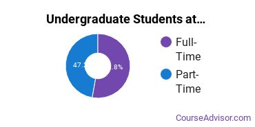 Full-Time vs. Part-Time Undergraduate Students at  BHSU