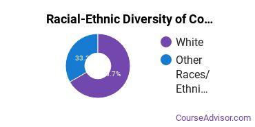 Racial-Ethnic Diversity of Computer Science Majors at Bob Jones University