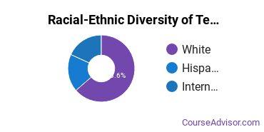Racial-Ethnic Diversity of Teaching English or French Majors at Bridgewater State University