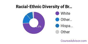 Racial-Ethnic Diversity of Broadview University - West Jordan Undergraduate Students