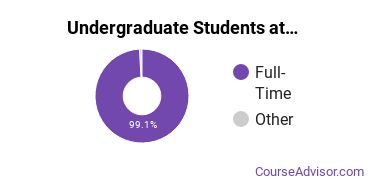 Full-Time vs. Part-Time Undergraduate Students at  Bryn Mawr