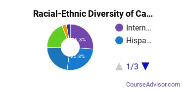 Racial-Ethnic Diversity of Cambridge College Undergraduate Students