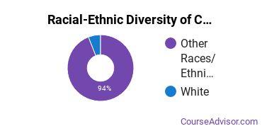 Racial-Ethnic Diversity of CCCC Undergraduate Students