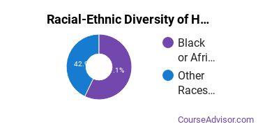 Racial-Ethnic Diversity of Human Development & Family Studies Majors at Capella University