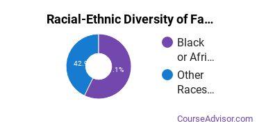 Racial-Ethnic Diversity of Family, Consumer & Human Sciences Majors at Capella University