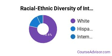 Racial-Ethnic Diversity of International Relations & National Security Majors at Central Michigan University