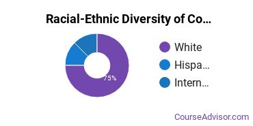 Racial-Ethnic Diversity of Computer Engineering Majors at Chapman University
