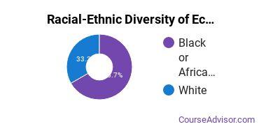 Racial-Ethnic Diversity of Economics Majors at Charleston Southern University