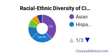 Racial-Ethnic Diversity of City College of San Francisco Undergraduate Students