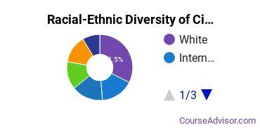 Racial-Ethnic Diversity of CityU Undergraduate Students
