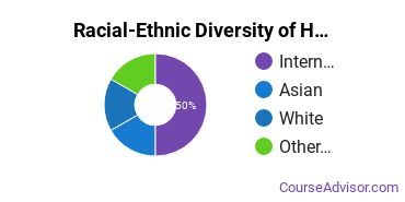 Racial-Ethnic Diversity of Human Computer Interaction Majors at College for Creative Studies