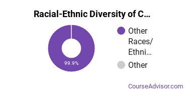 Racial-Ethnic Diversity of COM-FSM Undergraduate Students