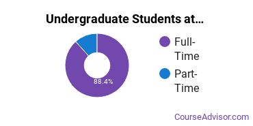 Full-Time vs. Part-Time Undergraduate Students at  Concordia University Chicago