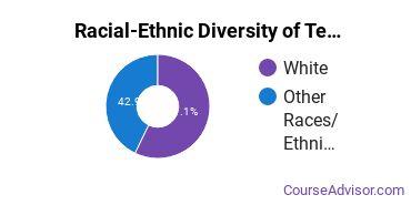 Racial-Ethnic Diversity of Teacher Education Grade Specific Majors at Concordia University, Nebraska