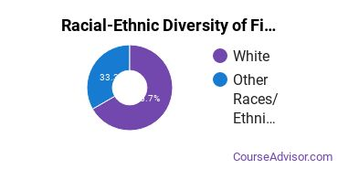 Racial-Ethnic Diversity of Fine & Studio Arts Majors at Concordia University, Nebraska