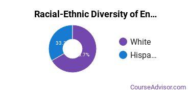 Racial-Ethnic Diversity of English Language & Literature Majors at Concordia University - Texas