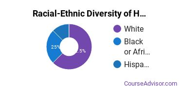 Racial-Ethnic Diversity of Health & Medical Administrative Services Majors at Converse College