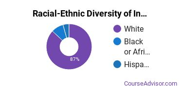 Racial-Ethnic Diversity of Industrial Production Technology Majors at Danville Community College