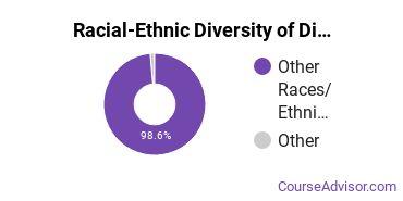 Racial-Ethnic Diversity of Dine College Undergraduate Students