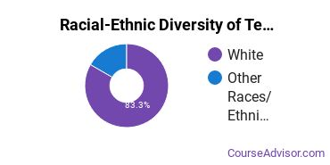 Racial-Ethnic Diversity of Teacher Education Subject Specific Majors at East Central University