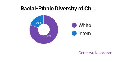 Racial-Ethnic Diversity of Chemistry Majors at East Central University