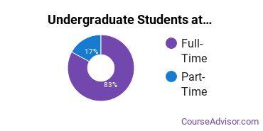 Full-Time vs. Part-Time Undergraduate Students at  ECSU