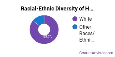 Racial-Ethnic Diversity of Heating, Air Conditioning, Ventilation & Refrigeration Majors at Eastern Maine Community College
