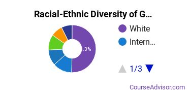 Racial-Ethnic Diversity of GWU Undergraduate Students