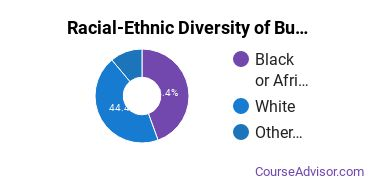 Racial-Ethnic Diversity of Business Administration & Management Majors at Hennepin Technical College