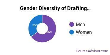 Hennepin Technical College Gender Breakdown of Drafting & Design Engineering Technology Associate's Degree Grads