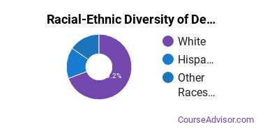 Racial-Ethnic Diversity of Design & Applied Arts Majors at Herzing University - Madison