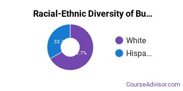 Racial-Ethnic Diversity of Business Support & Assistant Services Majors at Highland Community College
