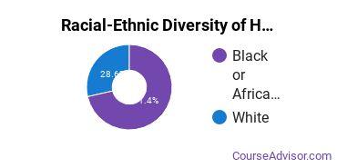 Racial-Ethnic Diversity of Huntsville Bible College Undergraduate Students