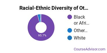 Racial-Ethnic Diversity of Other Education Majors at Jackson State University