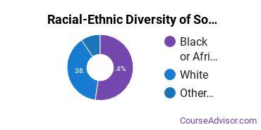 Racial-Ethnic Diversity of Sociology Majors at Lander University