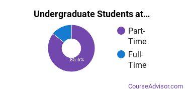 Full-Time vs. Part-Time Undergraduate Students at  Laurus College