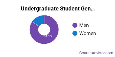 Undergraduate Student Gender Diversity at  STC