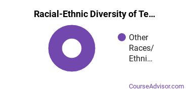 Racial-Ethnic Diversity of Teacher Education Grade Specific Majors at Little Big Horn College